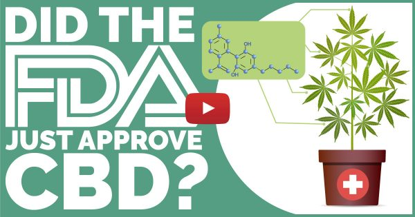 Image For FDA Approves First CBD Product — The Benefits Can No Longer Be Denied Blog Post