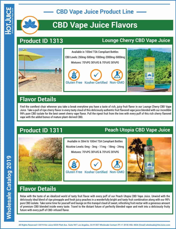 Hot Juice Wholesale Catalog 2019 Page 43